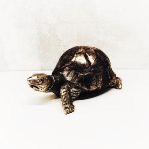 tartaruga-legno-castorina-artempo-lato-1