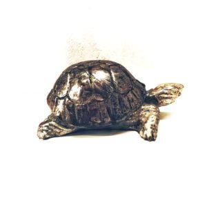 tartaruga-legno-castorina-artempo-lato-3